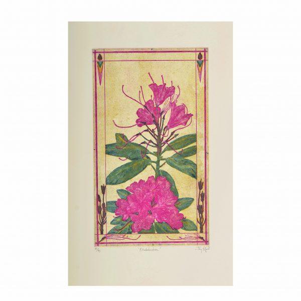 rhododendron handmade pink print