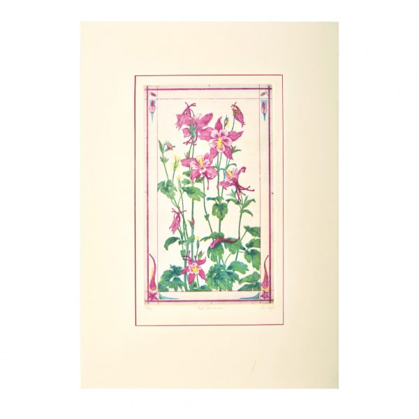 red columbines etching print