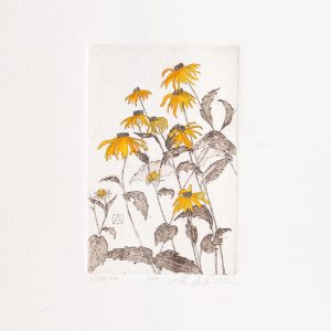 blacked eyed susan flower print, handmade flower print