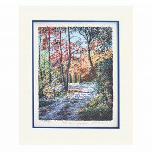 colorful mountain path pring