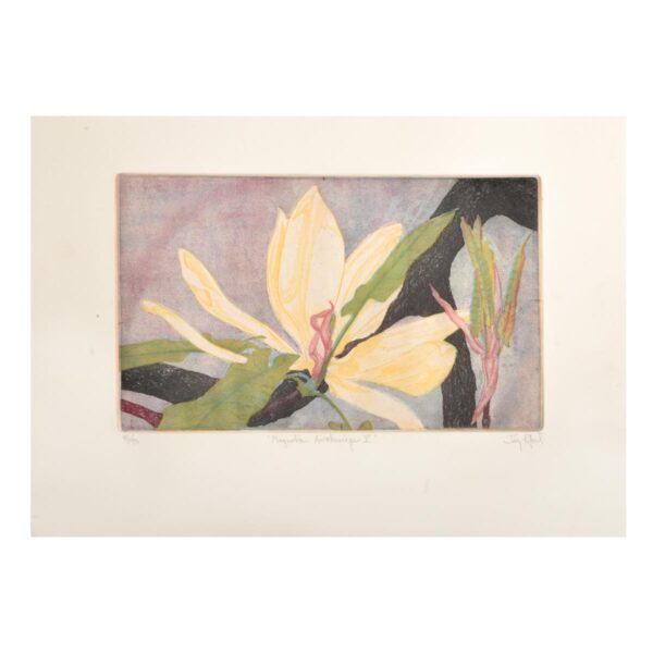handmade colored magnolia etching