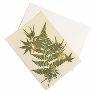 fern beeswax note card