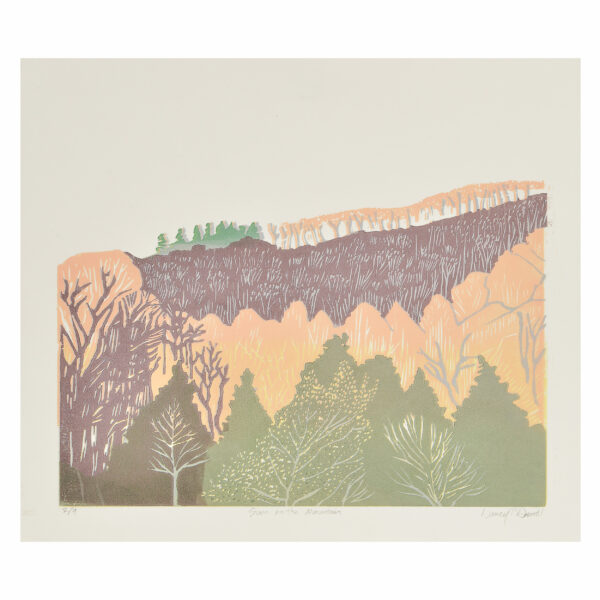 colorful mountain print, traditional woodcut pring