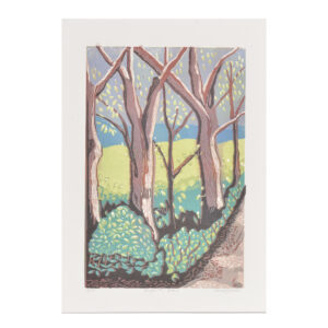 colorful mountain handmade print, forest print, nc printmaker, before the storm print